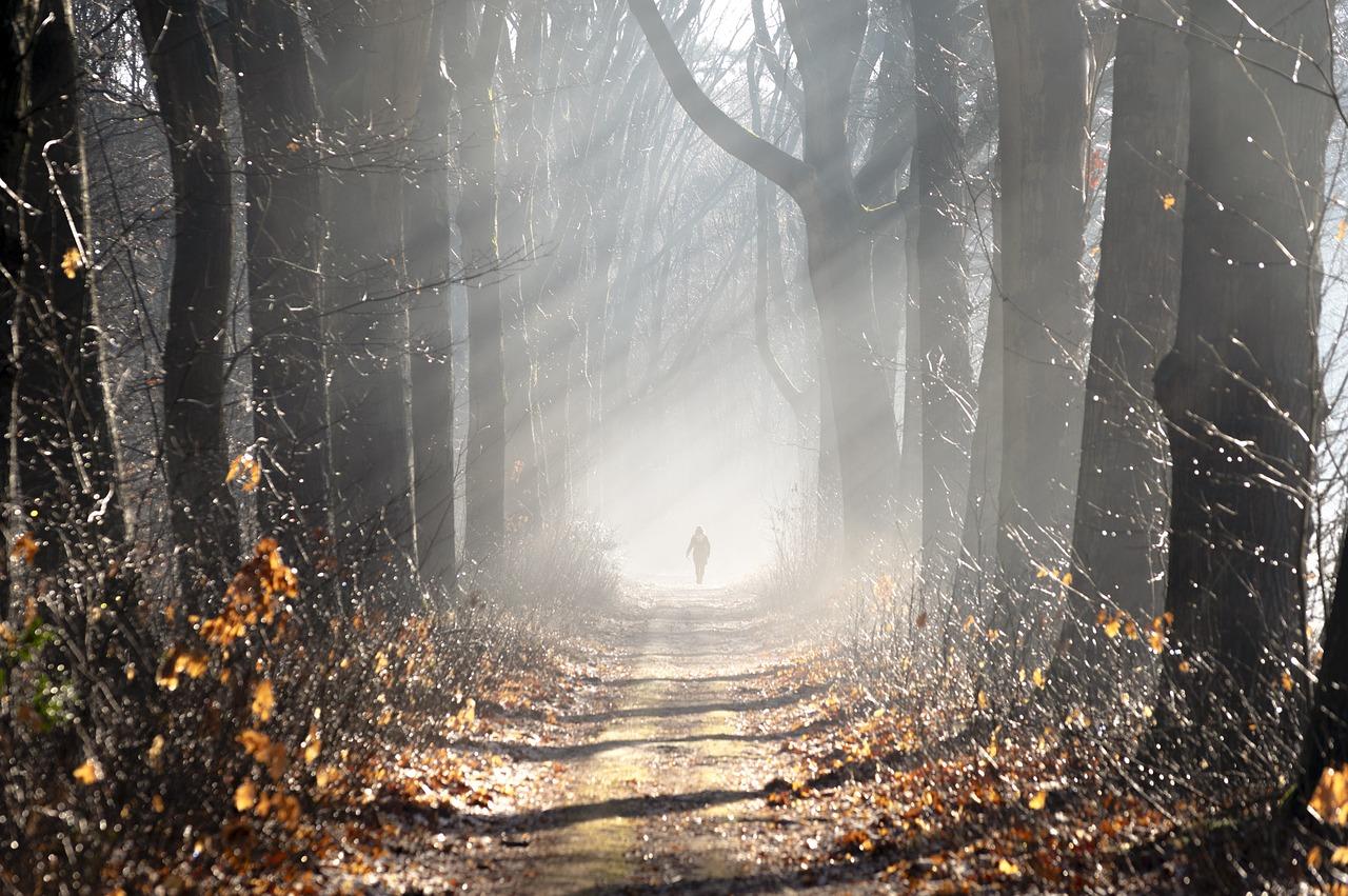 советы для фото в тумане есть
