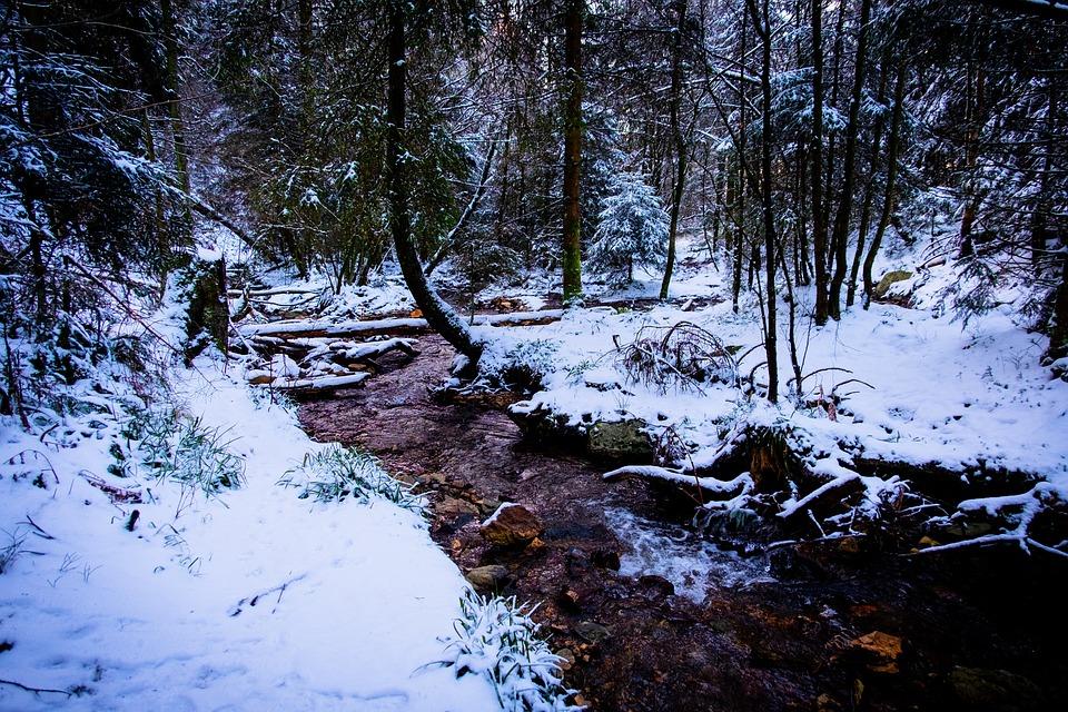 Winter in Ardennes