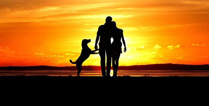Sunset, Man, Woman, Dog, Couple