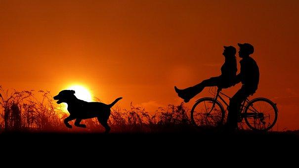 Sunset, Couple, Bike, Dog, Love