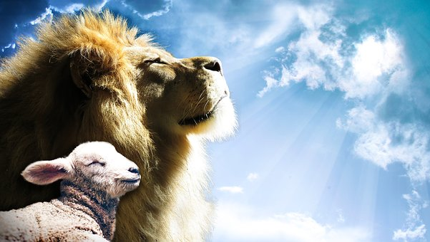 ライオン, ラム, 空, イエス, 神様, 神聖な, 精神, 聖書, 福音