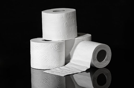 Image result for toilet paper photo