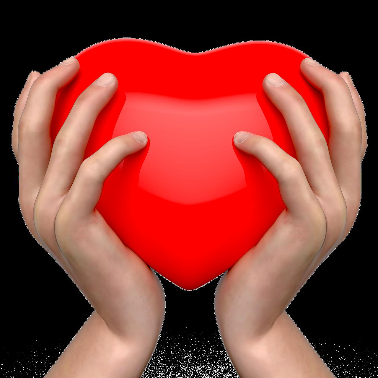 Beautiful Hand Cute Free Image On Pixabay