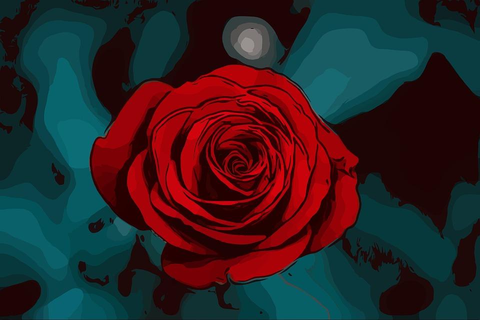 Rose çiçek Doğa Pixabayde ücretsiz Resim