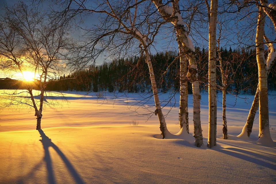 Tramonto, Paesaggio, Natura, Inverno, Twilight, Alberi