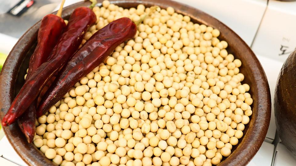 Bean, White Kong, Tofu In Hong Kong, Tofu, Dry Pepper