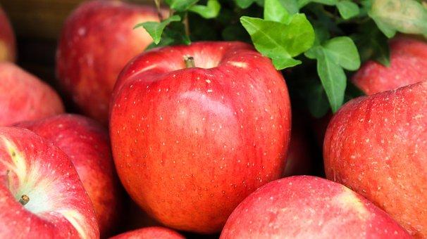 农民如何提高农产品竞争力?