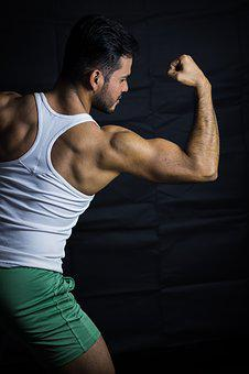 What are the best workouts for building back muscles?