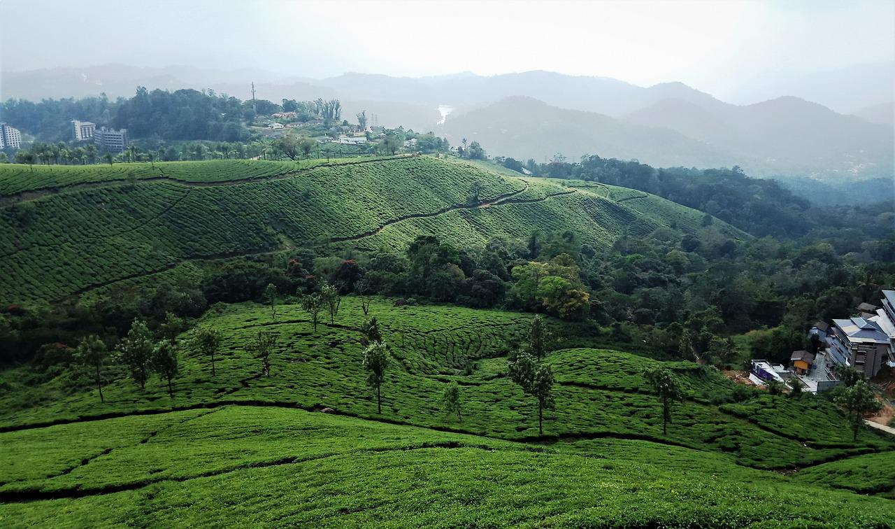 Weather in munnar; various seasons in munnar