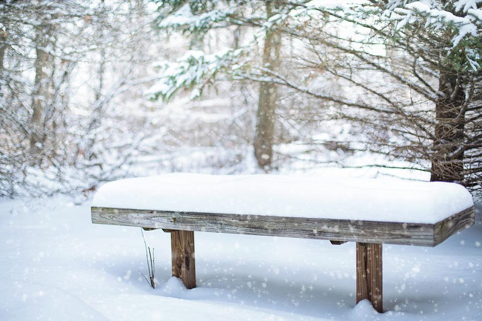 Snow, Bench, Snowy, Winter, Cold, Nature, Frozen