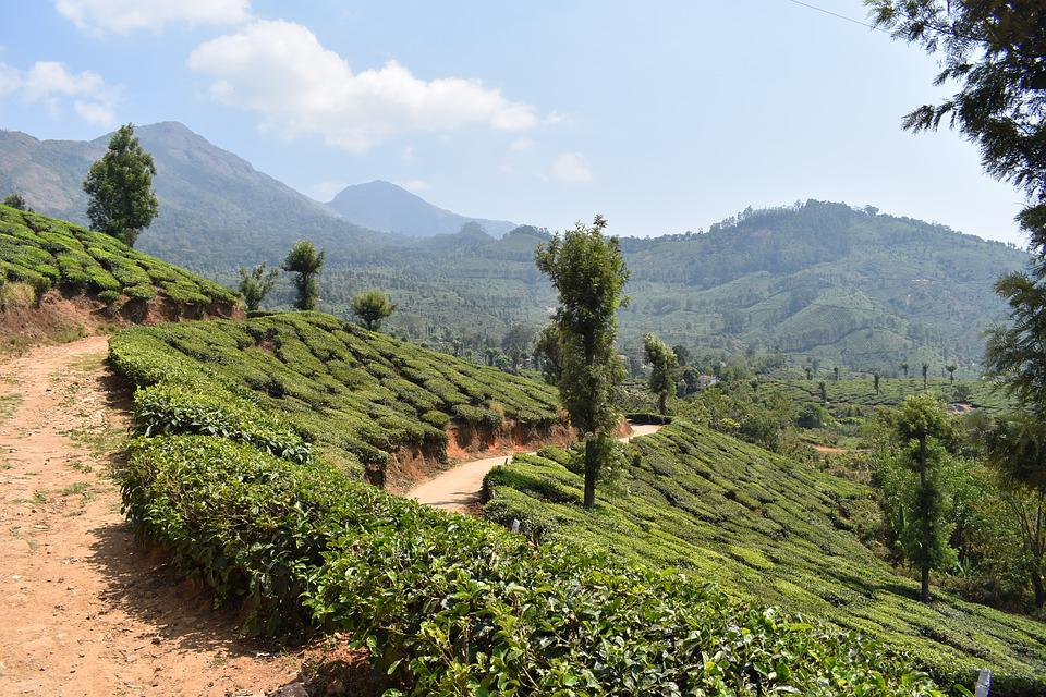 Which is the Best Tourist Spot in Kerala? 1