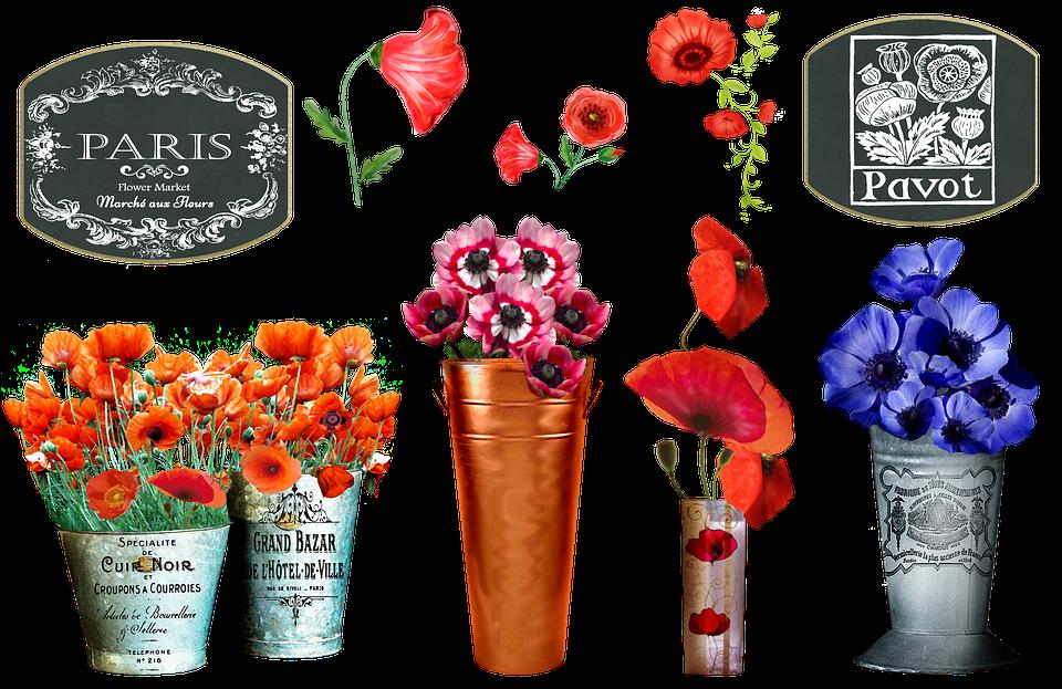 Franceză Piața De Flori Mac Marche Imagine Gratuită Pe Pixabay