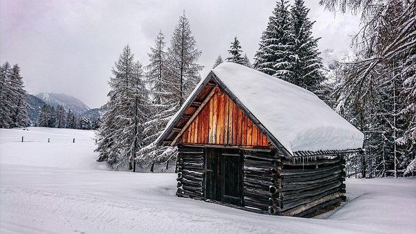 Winter, Snow, Forest, Cold, Austria