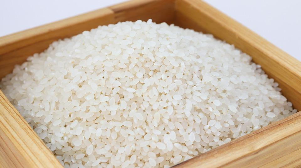 Rice, White Rice, Korea, Food, Harvesting, Crops, Ch