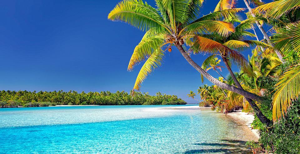 Cook Islands, Beach, Palm Trees, Sand, Sea, Island