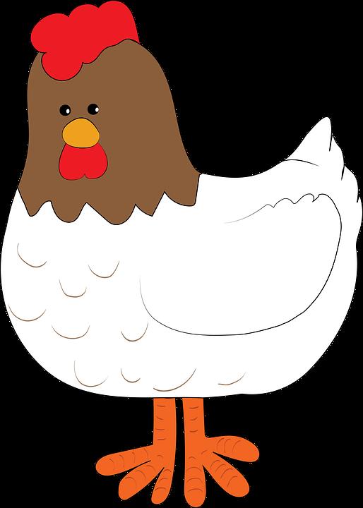 Resultado de imagen de gallina png