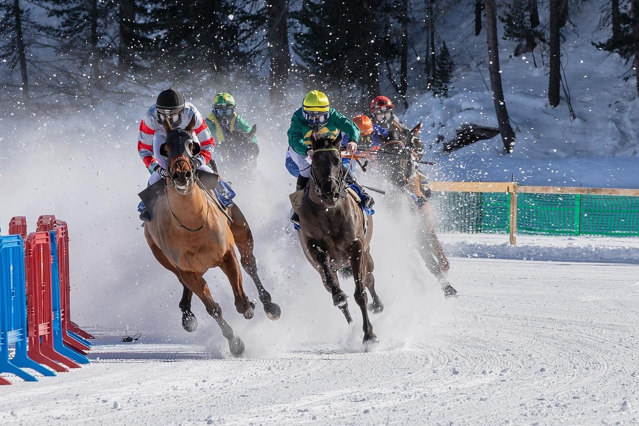 White Turf Horse Racing Ice Free Photo On Pixabay