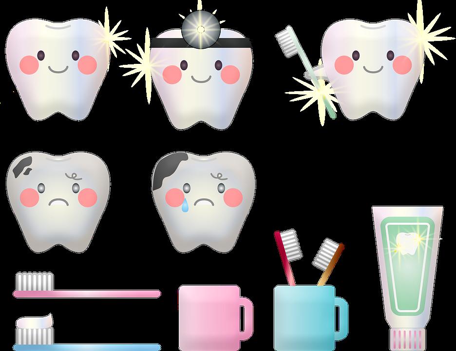 歯の衛生、歯、歯ブラシ、歯の虫歯、歯科医