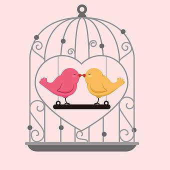 愛の鳥, 美しいカップル, 愛は人生, 鳥を愛, 鳥, カップル, ロマンチック