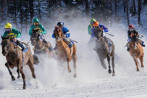 馬のレース, ギャロップ, ジョッキー, 馬, 馬術の, 速度, 冷