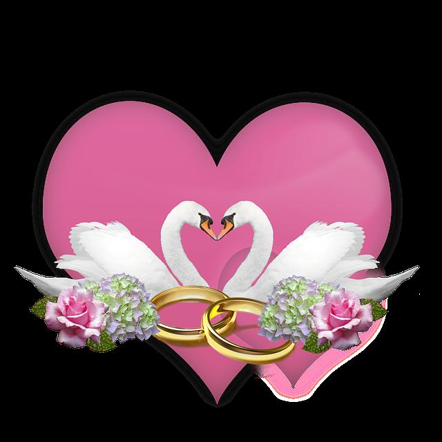 Открытка голуби и кольца, открытка февраля