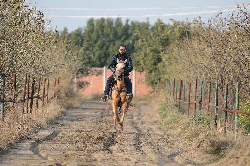 Horse riding in Agistri island