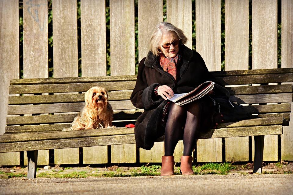 Oudere Dame, Vrouw, Vergadering, Lezen, Bank, Hond