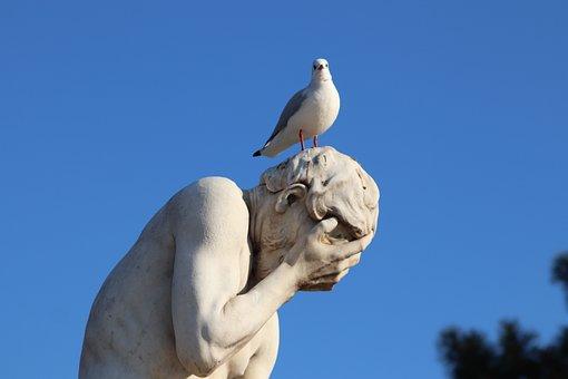 Stone Statue, Sculpture, Seagull