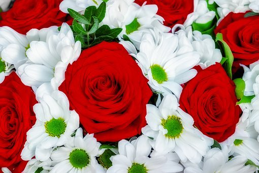 Roses, Daisy, Bouquet, Mother'S Day,Know more about the days leading up to Valentine's day like Rose Day, Chocolate day and Anti-Valentine's day like break up day, slap day and more.