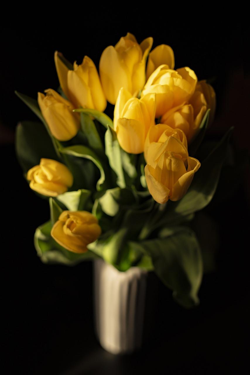 акция это картинки желтых роз и тюльпанов покрытие является