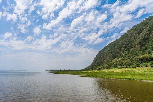 Danau, Manyara, Afrika, Alam, Nasional