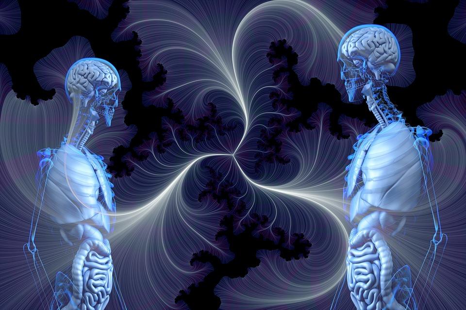 Anatomia, Umano, Consapevolezza, Trasparenza