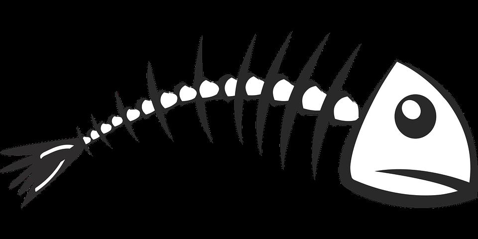 Картинка скелет рыбы на прозрачном фоне