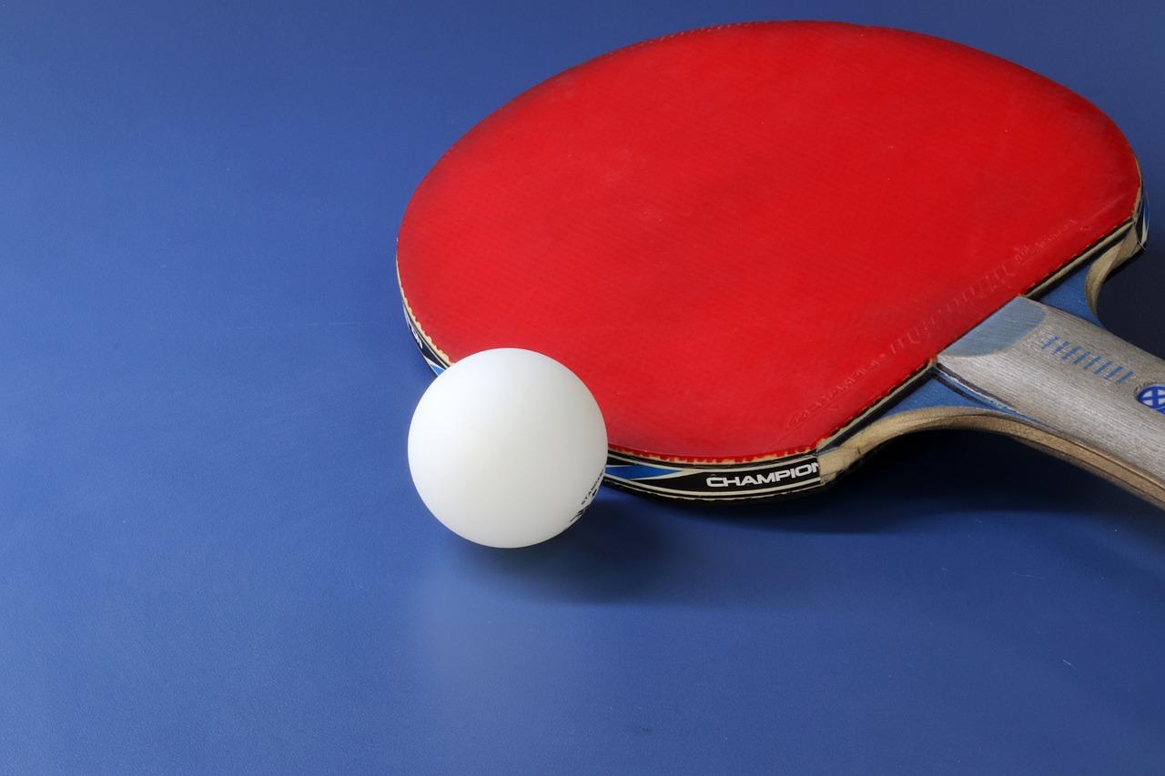 Buy Table Tennis Bats Cases