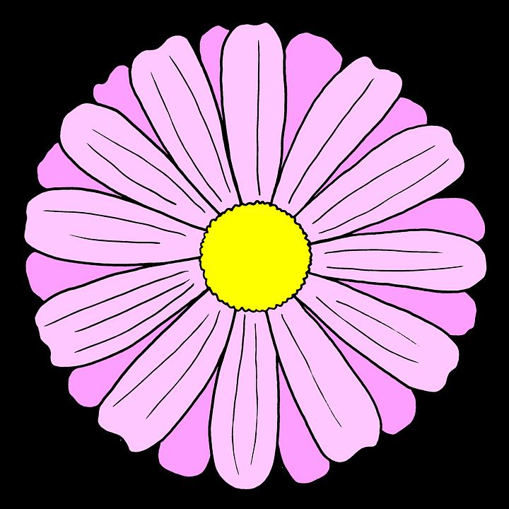 Kreslení Květina Pružina - Obrázek zdarma na Pixabay