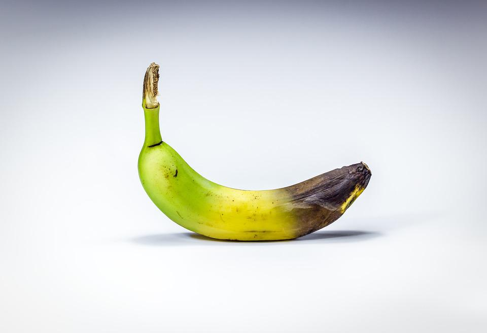 バナナ, スタジアム, 崩壊, Lazy, 熟した, 未熟な, 古い, 腐敗, 茶色, 人間の消費に不適当