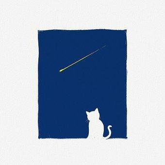 Fairy Tale, Cat, Night, Meteor