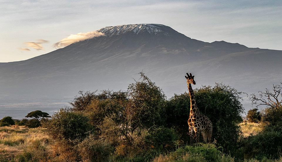 Kilimanjaro Trekking - Hiking and Trekking in East Africa