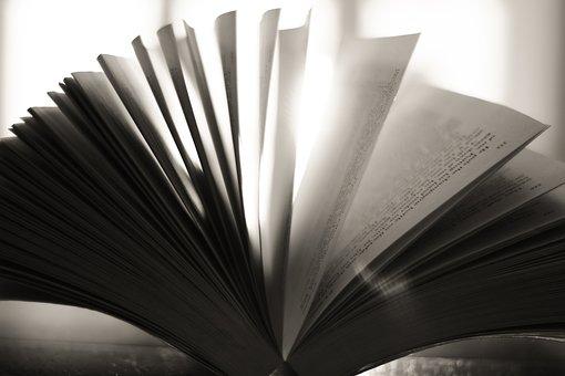 Livro, páginas, livros, papel, leitura
