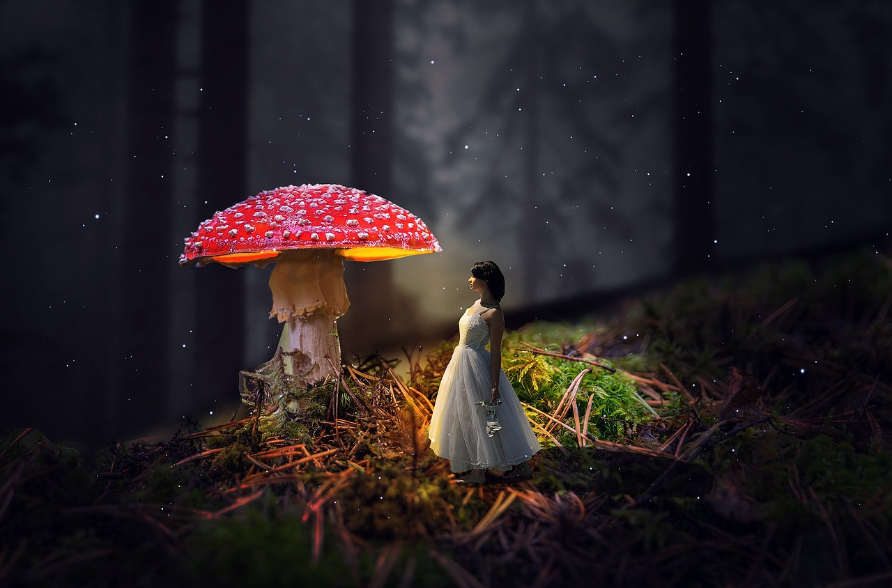 Картинки девочка лес грибы