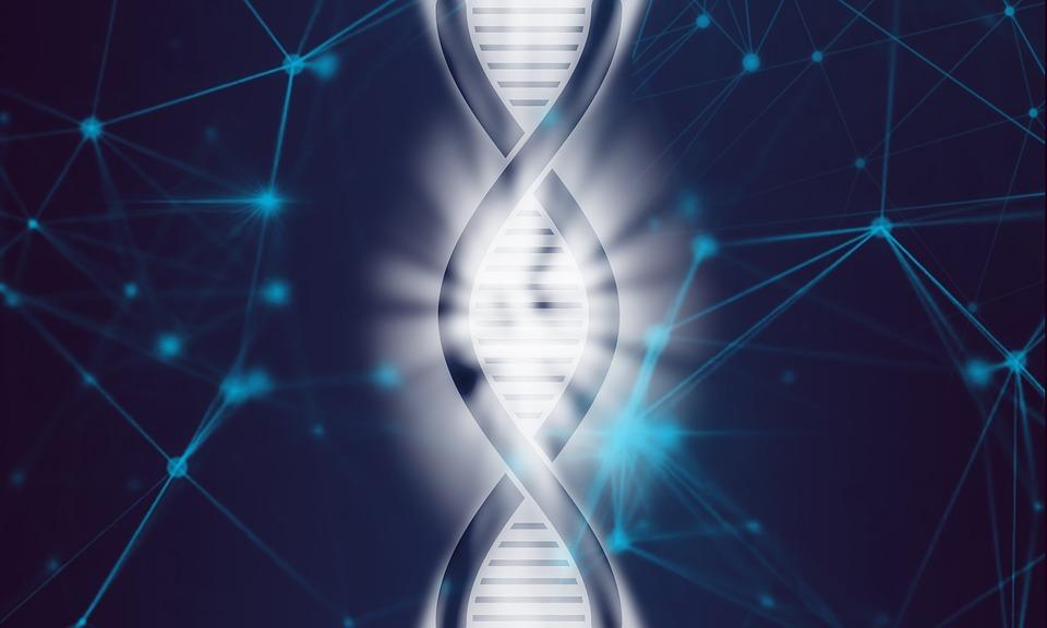 Кто такой генетик чем он занимается и в каких случаях к нему обращаются