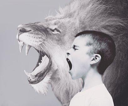 Kind, Junge, Löwe, Raubtier, Brüllen