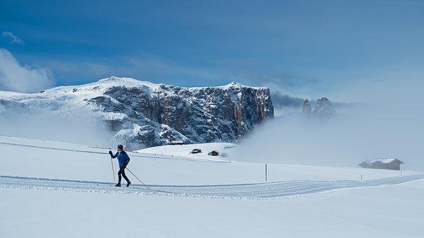 Esquí, Esquí De Fondo, La Nieve