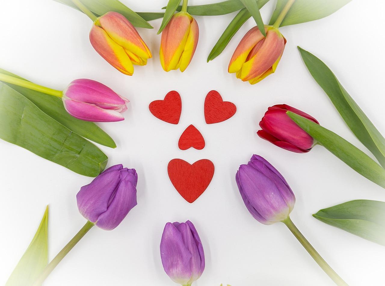 тюльпаны картинки сердце сабвуфер стелс