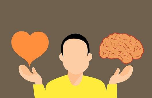 意思決定, 脳, 中心部, 心, 困難, Vs, ロジック, 愛, 反対, 選択