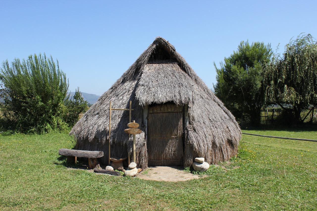Si te fueras a una isla desierta... Mapuche-4084181_1280