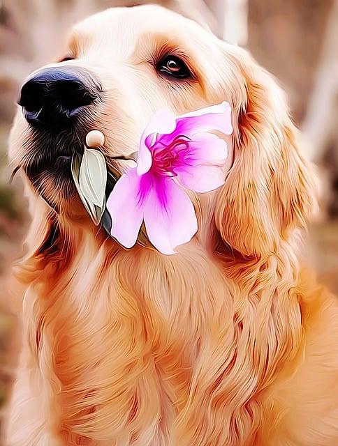 щенок с цветами в зубах фото армия настоящее время