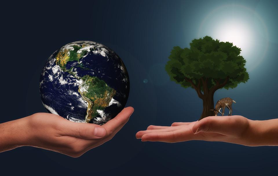 Mãos, Terra, Próxima Geração, Proteção Do Clima, Espaço