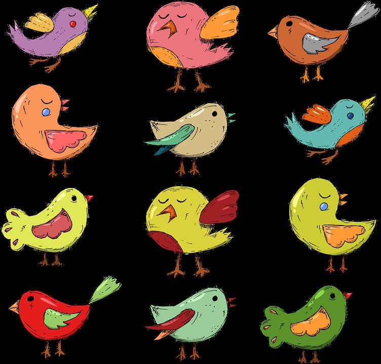 デメリット2.デザインなどの自由度が低い|いろいろな鳥デザインの画像|集客できるブログはWordPressがおすすめ|アインの集客マーケティングブログ
