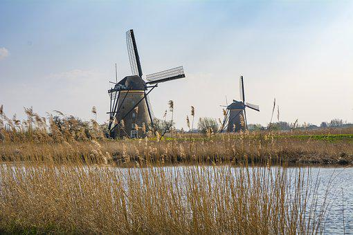 네덜란드, 밀링, 풍차, 여행, 물, 순회 공연, 관광, 유로 파, 봄